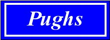 Pughs Estate Agents logo